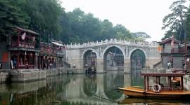 China - Encuentro con Osos Panda